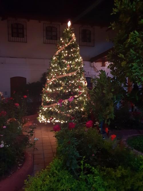 Weihnachten in Antigua